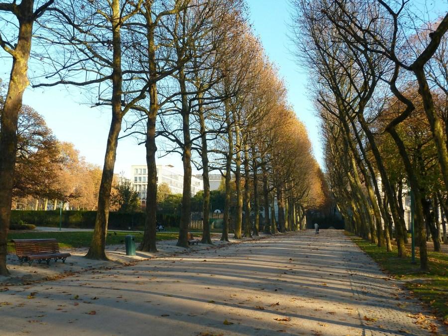 Bruxelles_Sourires