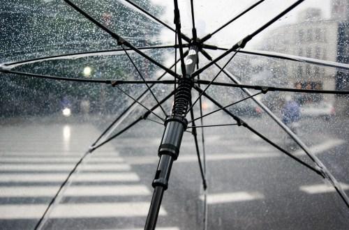 Février 2020 sous la pluie
