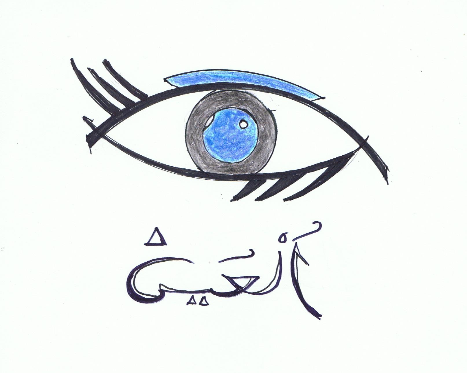 Ziemlich Das Auge Markiert Bilder - Anatomie Und Physiologie Knochen ...