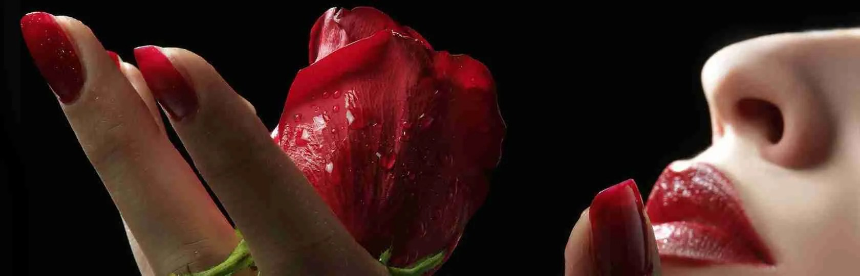 Le escort Mantova sono donne molto romantiche ma anche passionali e disinibite. Magica Escort