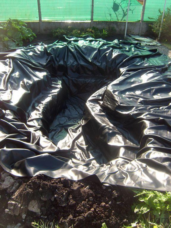 Bassin de jardin – La bâche