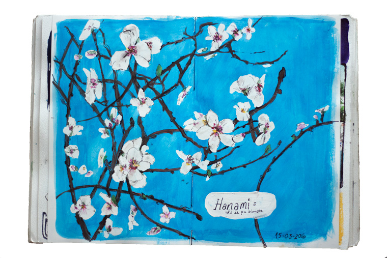 drawing and painting flowers. Watercolour Reviews. HANAMI お花見