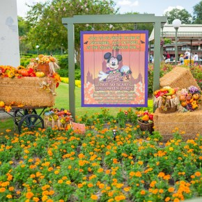 MNSSHP 2015 — What We Know