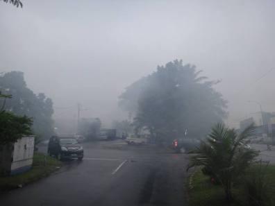 That's not mist. It's bug spray.