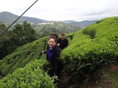 Tanya and Andrew in the Tea Plantation in the Cameron Highlands