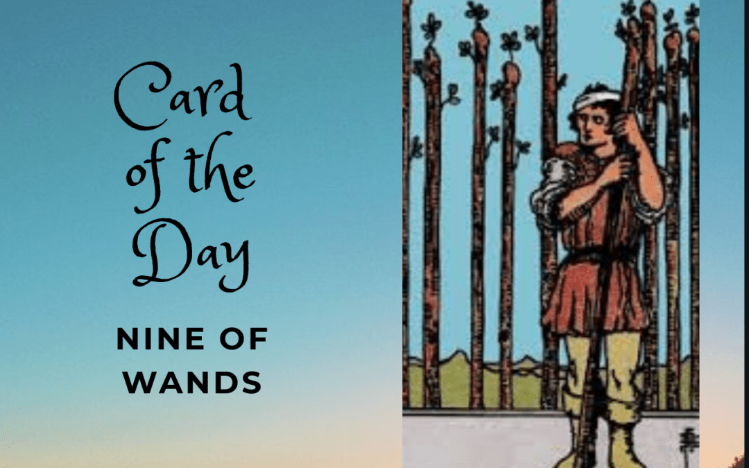 Nine of Wands Daily Card