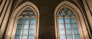 elegant house windows