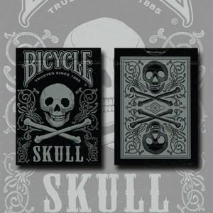 Bicycle Skull Metallic (Silver) USPCC by Gambler's Warehouse
