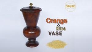 Orange and Rice Vase by Sorcier Magic