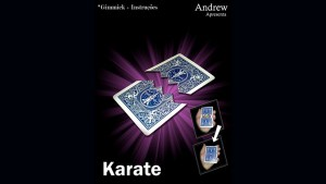 Karate by Andrew video DOWNLOAD - Download