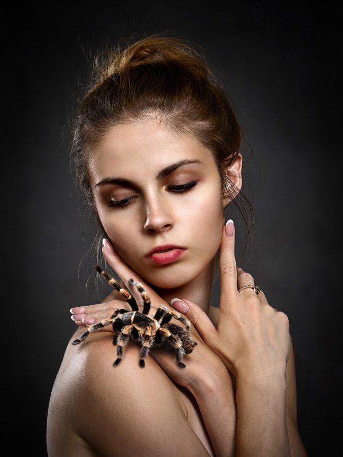 Qu'est-ce que cela signifie si vous rêvez d'araignées