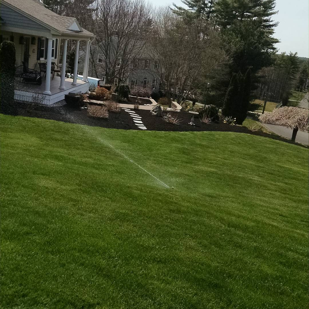 Irrigation System Settings for Hot Summer Days