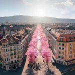 Le bellezze di Zurigo