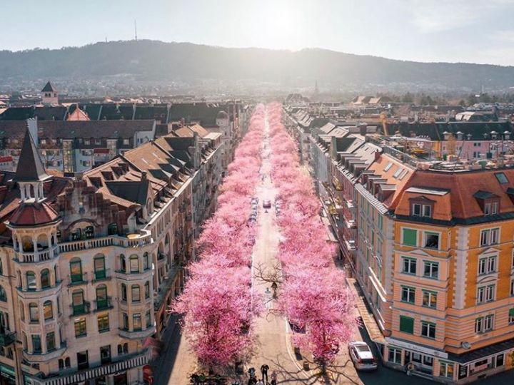 Zurigo, in attesa di scoprire e riscoprire le meraviglie di questa città