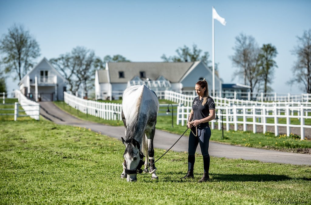 Sveriges kanske vackraste hästgård arbetar med oss