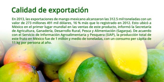 recuadro-mango-mexicano