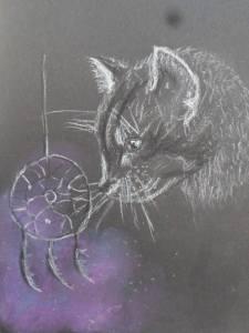 Sueños de gato
