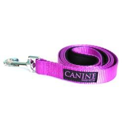 Purple dog collar lead - Canine Magnetix