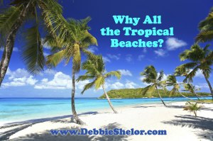 Why Does Debbie Takara Shelor Have So Many Beaches on Her Websites