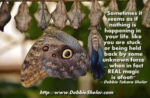 Metamorphosis and Transformation Sometimes Look Like Stuckness