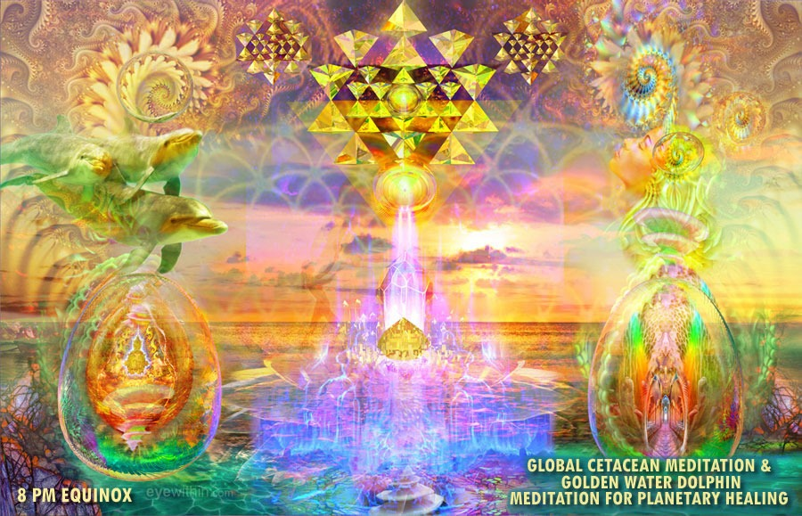 Free Golden Water Dolphin Meditation for Planetary Healing