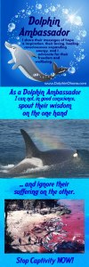 Dolphin Advocate