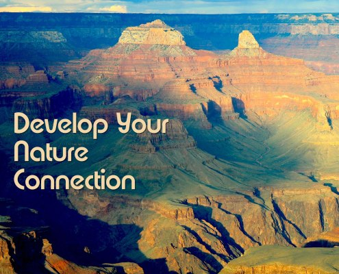 How to Develop a Deep Nature Connection