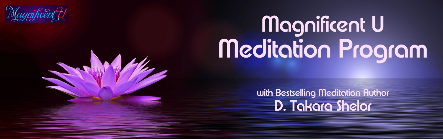 Learn how to meditate with the online meditation course