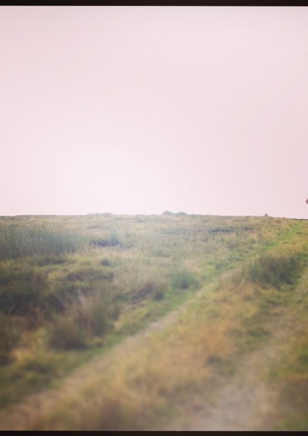 Getting Gloomy in the Moors