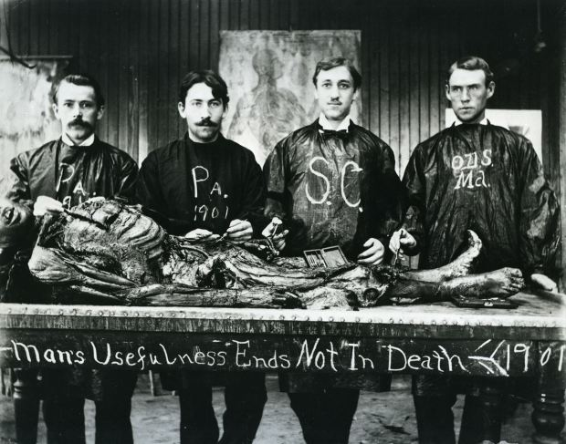 dissection_cadavers_007