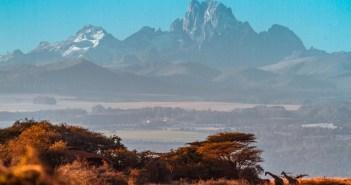 Mount Kenya as seen from Lewa Conservancy | by Japicha