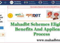 Mahadbt Scholarship Eligibility Criteria For Maharashtra Scholarship 2021. 3