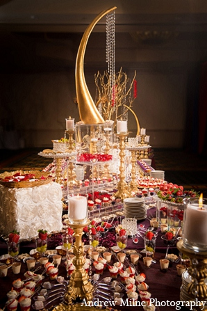 Coral Springs Florida Indian Wedding By Andrew Milne