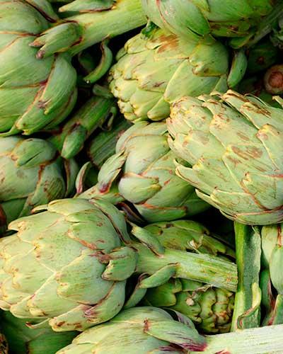 Alcachofa para el dip con espinaca