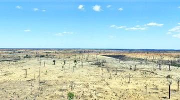 Déforestation et feux de brousse à Madagascar