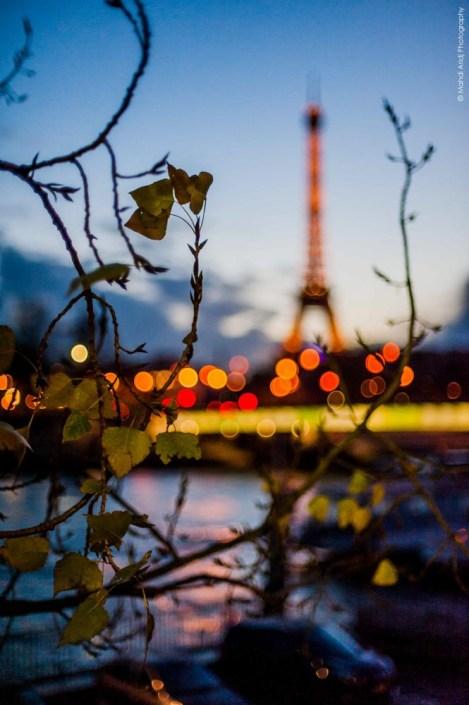 La tour Eiffel depuis la rive droite juste aprés le couché de soleil | Eiffel tower view from the concorde right after the sunset