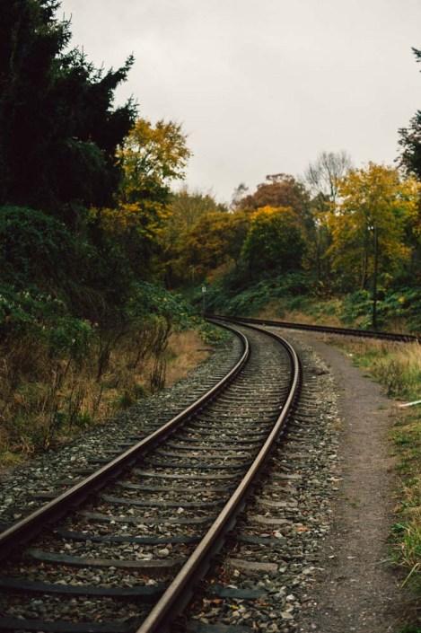 Schlutup - one day of autumn 6