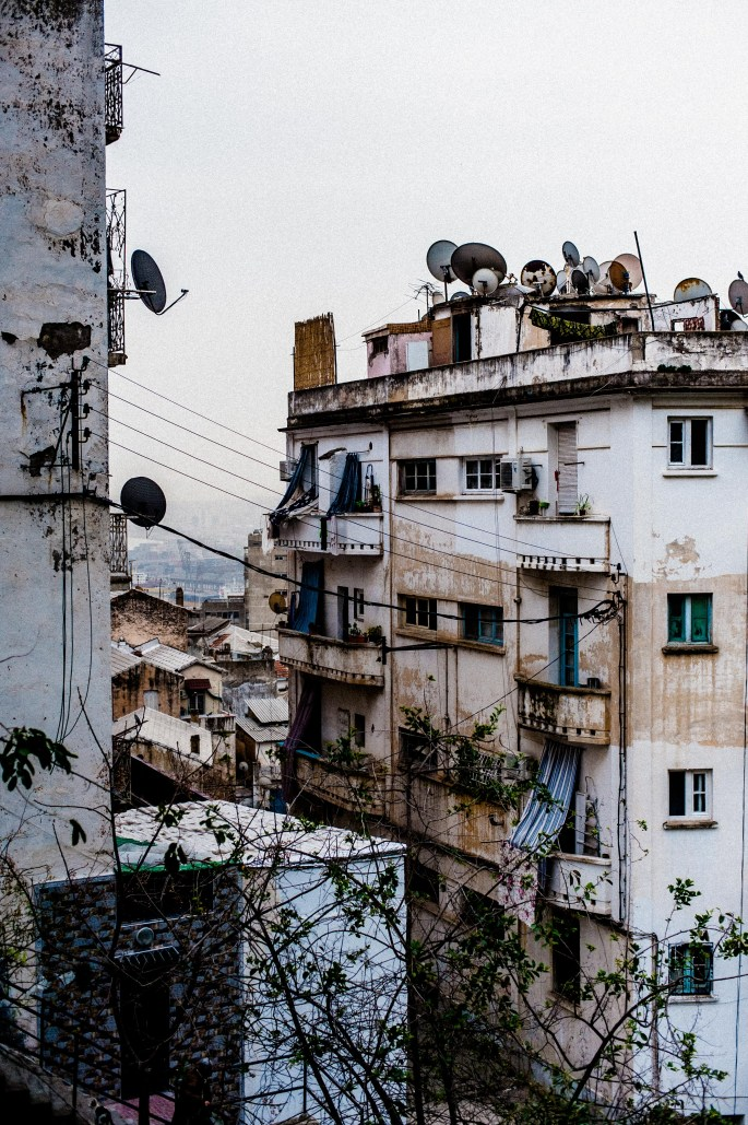 In the streets of Algiers 13