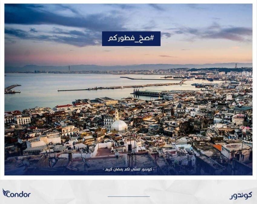 Copyright et non-respect des droits d'auteur en Algérie 4