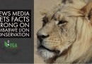 News Media Gets Facts Wrong on Zimbabwe Lion Conservation