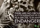 The Leopard & Its Endangered Species Ranking