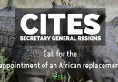 CITES Secretary General Resigns – Call for the appointment of an African replacement