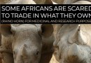 Africans Reject Trade in Favour of Aid – Neocolonial Dependency Syndrome