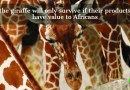 The Giraffe Will Only Survive if Their Products Have Value to Africans