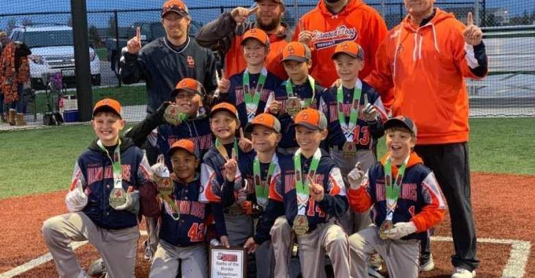 Mahomet Diamond Dogs Baseball Club - Home | Facebook