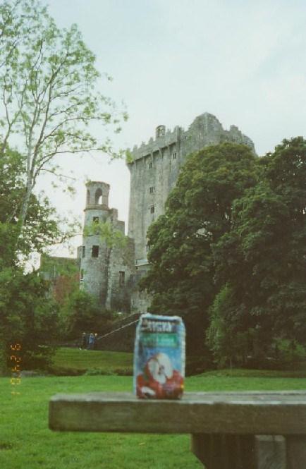 ire-cork-blarney-castle-02