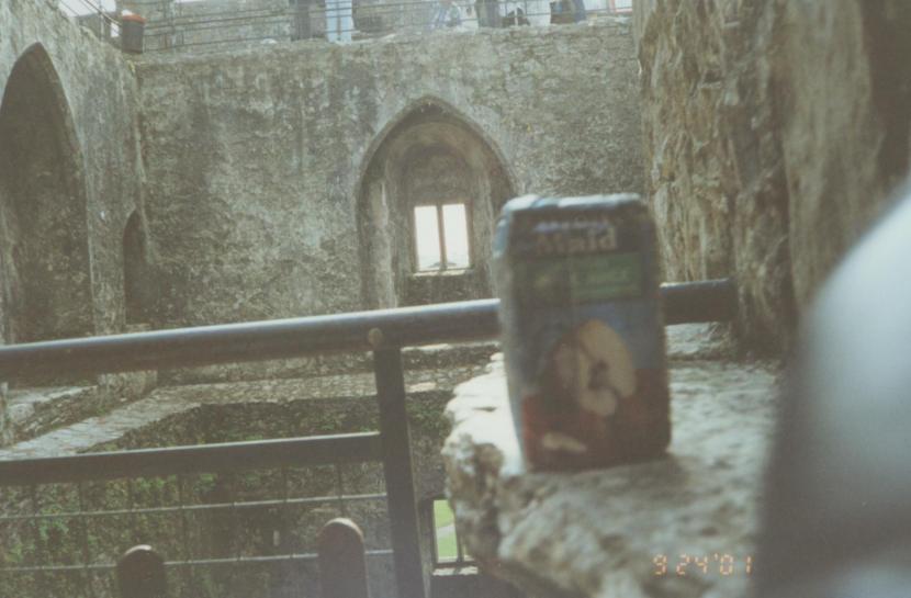 ire-cork-blarney-castle-05