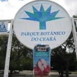 Bra Caucaia Botanical Park 0828