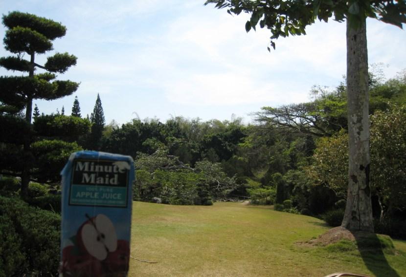 dr-botanical-garden-japanese-28-e1419220454625