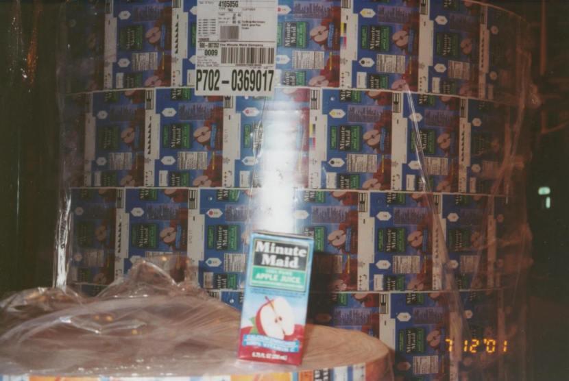 tx-maid-plant-home-13